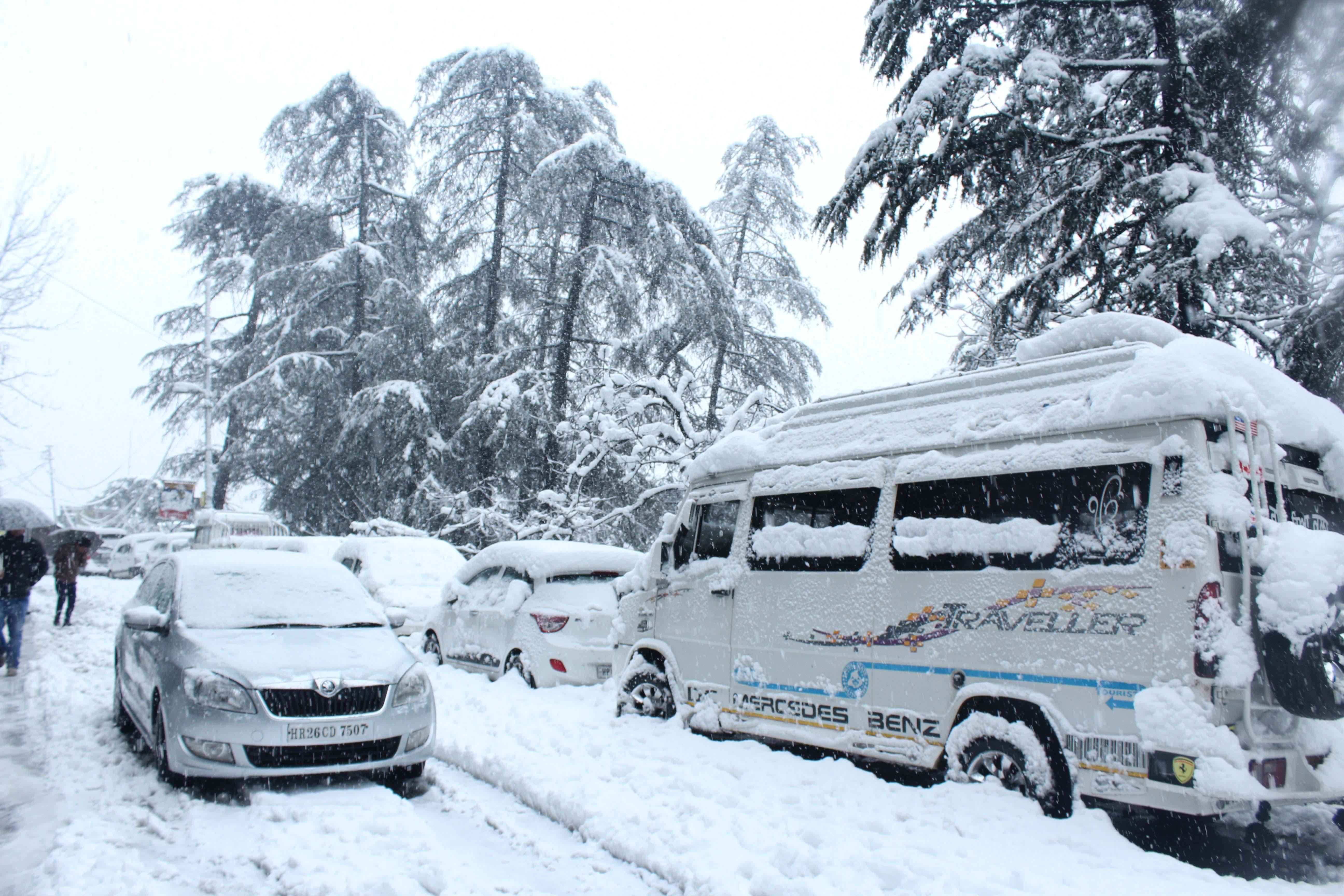 Shimla-Snow Live 2
