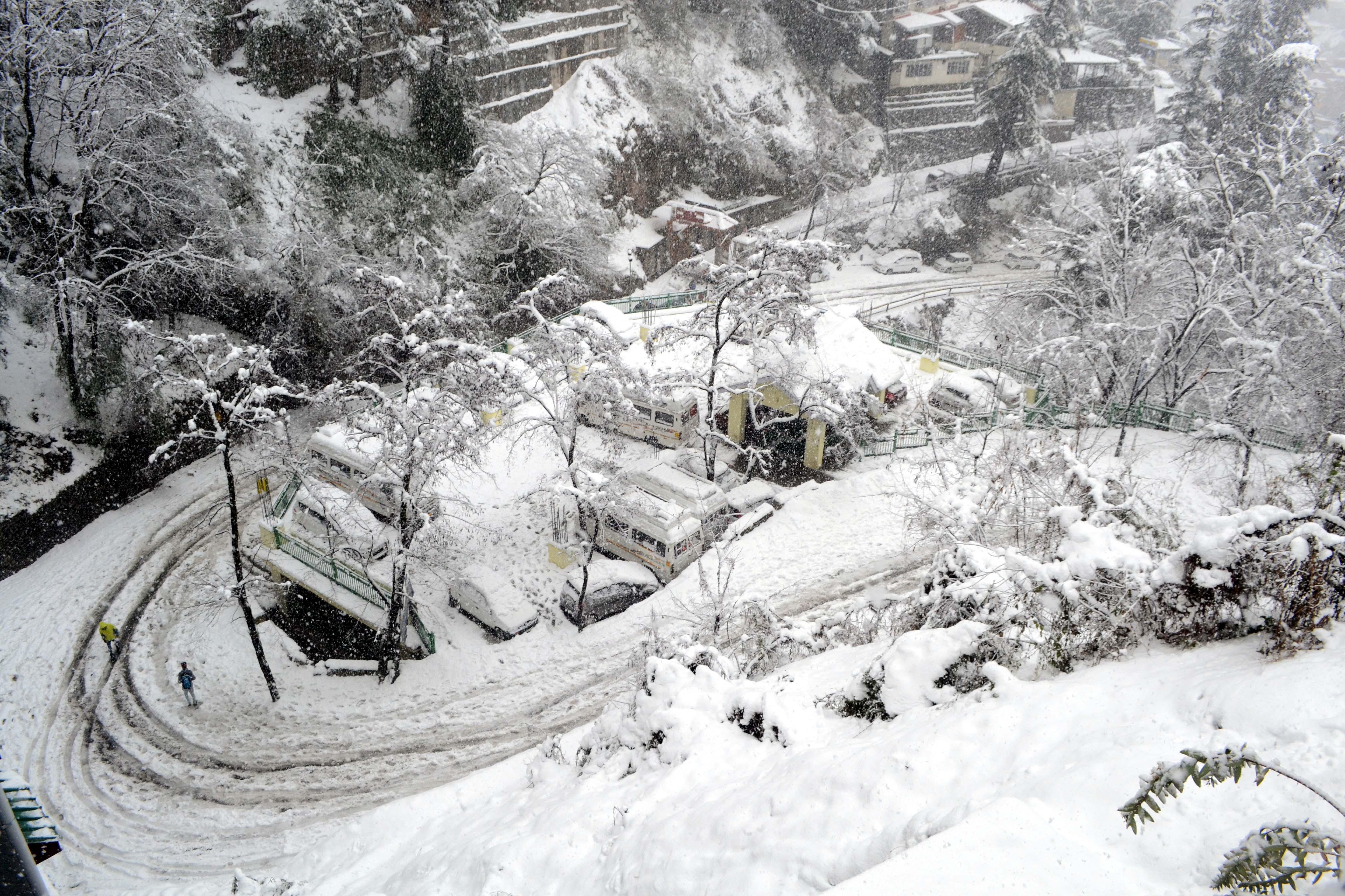 Shimla-Snow Live 8